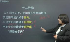 中医执业助理医师特训协议班