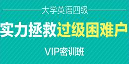 英语四级VIP培训