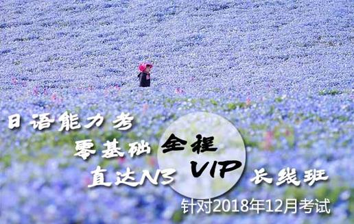 日语零基础直达N3全程VIP长线班(针对2018年12月考试)