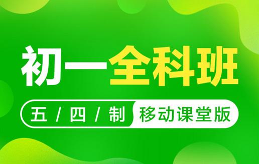 2018-2019年度初一全科强化VIP班(五四制)