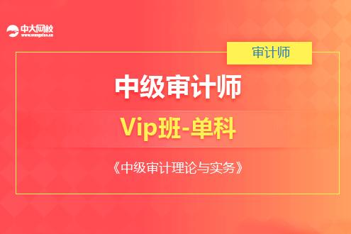 中级审计理论与实务培训VIP班