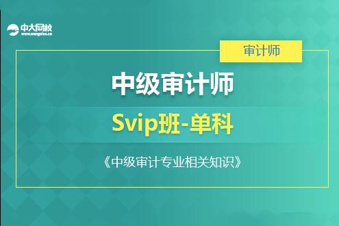 中级审计专业相关知识培训SVIP班