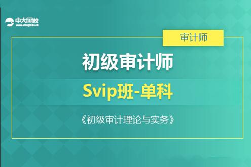 初级审计理论与实务培训SVIP班