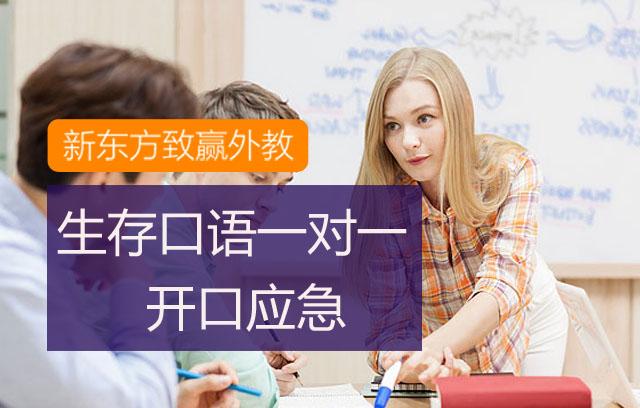 新东方口语外教