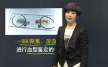 临床助理医师景晴老师视频