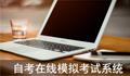 自考在线模拟考试系统