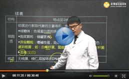 医学教育网名师叶冬试听课