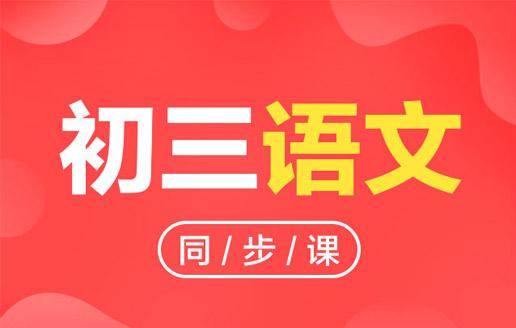 中考辅导初三同步课(语文)