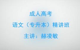 語文(專升本)精講班