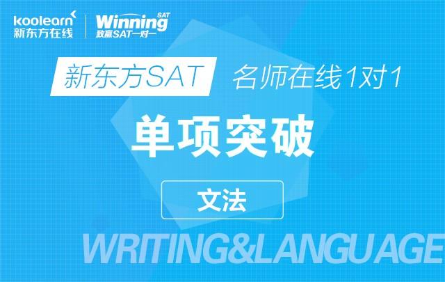 新东方SAT名师在线一对一单项突破(文法)