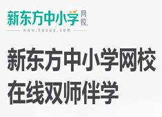 2019年初中双师同步课程