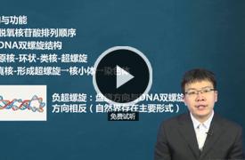 张蕴新考研西医课程