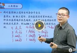 孙明杰-高中数学同步提高课程